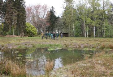 arboretum_herman-van-den-bosch