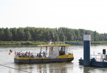 Scheldeveren in Kruibeke, Bazel en Rupelmonde