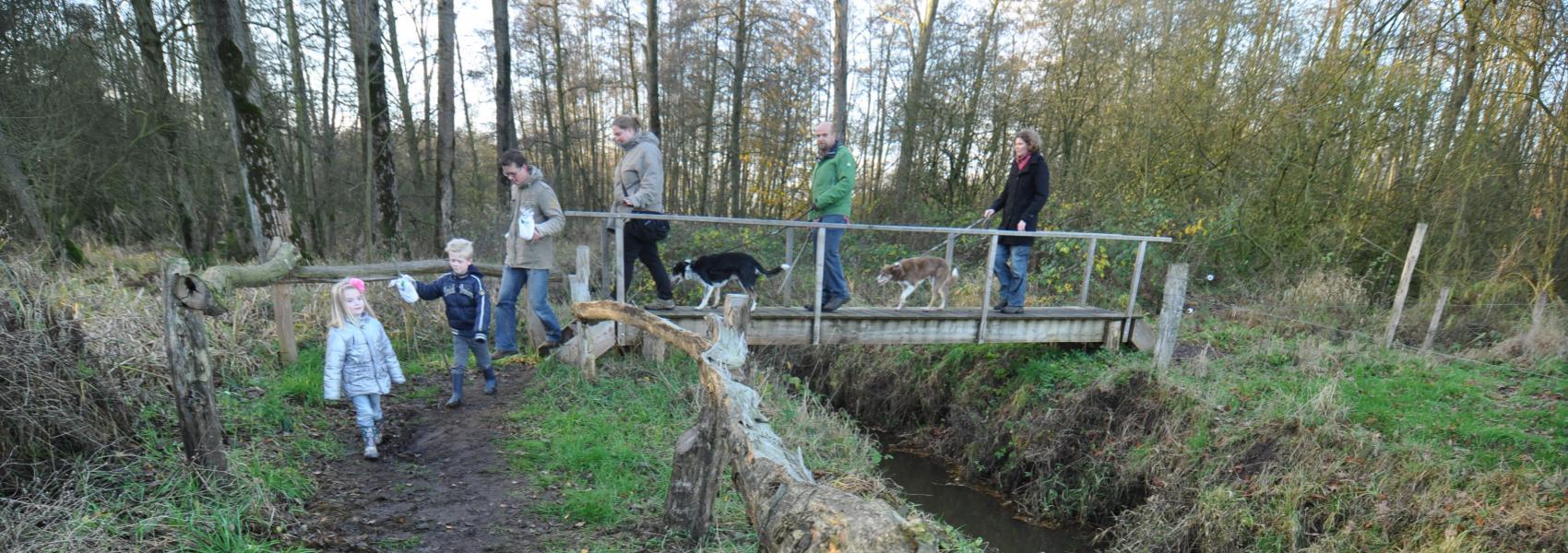 Wandelaars in Elsakker