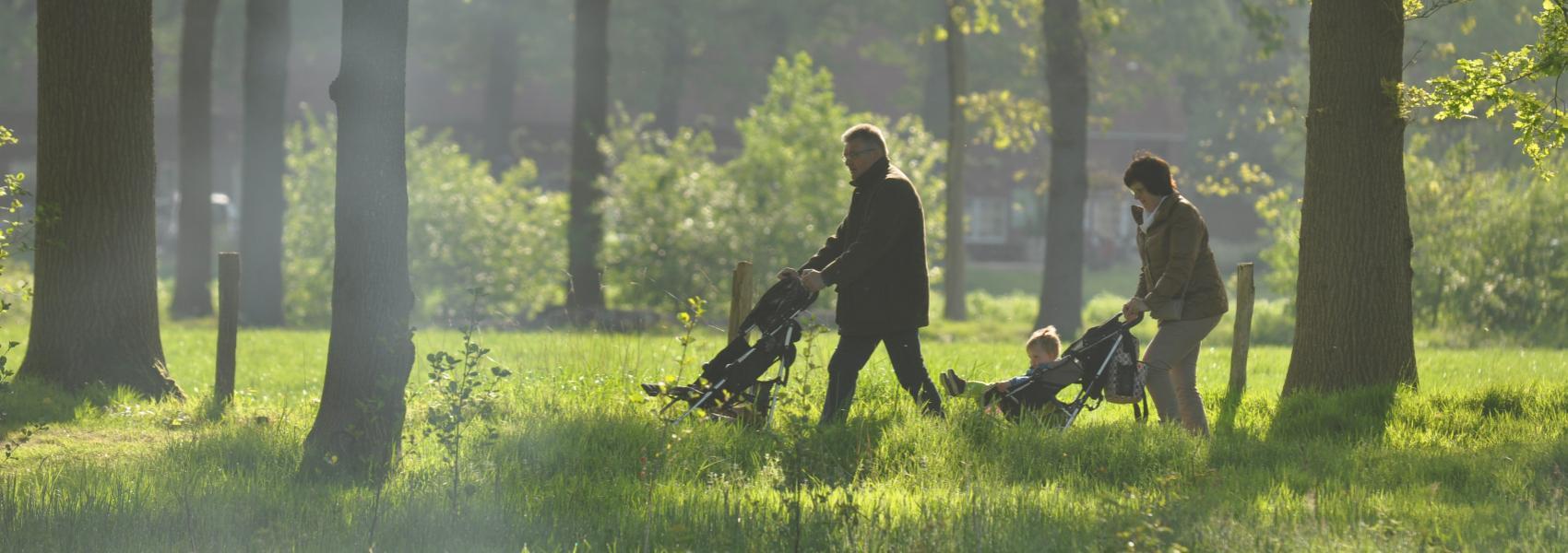 wandelaars met kinderwagens in het bos