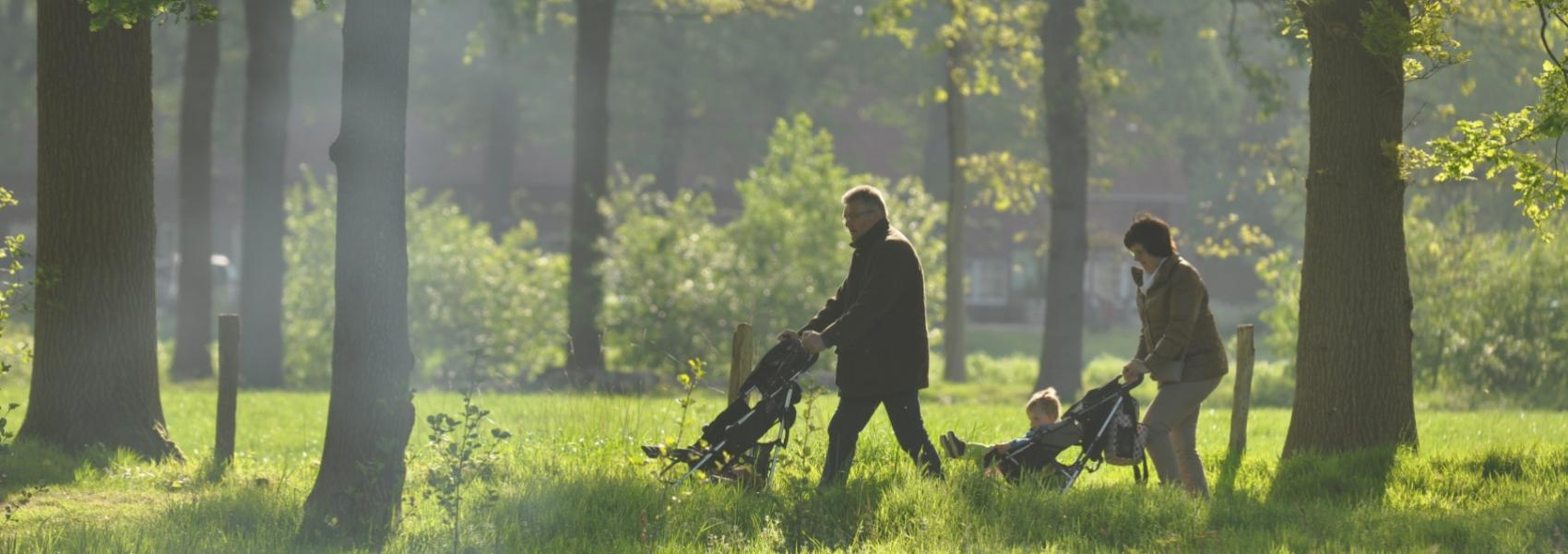 twee wandelaars met kinderwagens