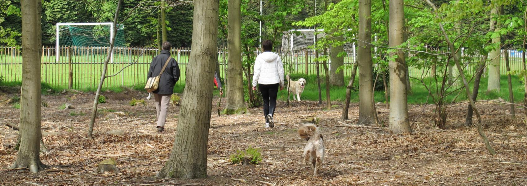 hondenzone in Peerdsbos