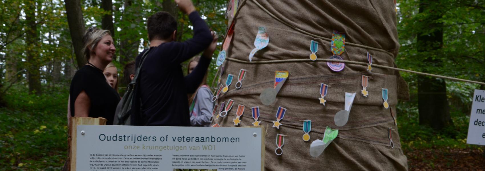 ingepakte boom met medailles