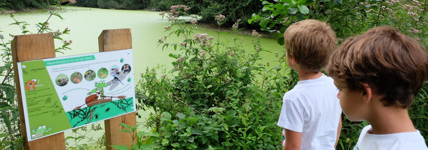 Dierenpad Vinderhoutse bossen - Griet Buyse