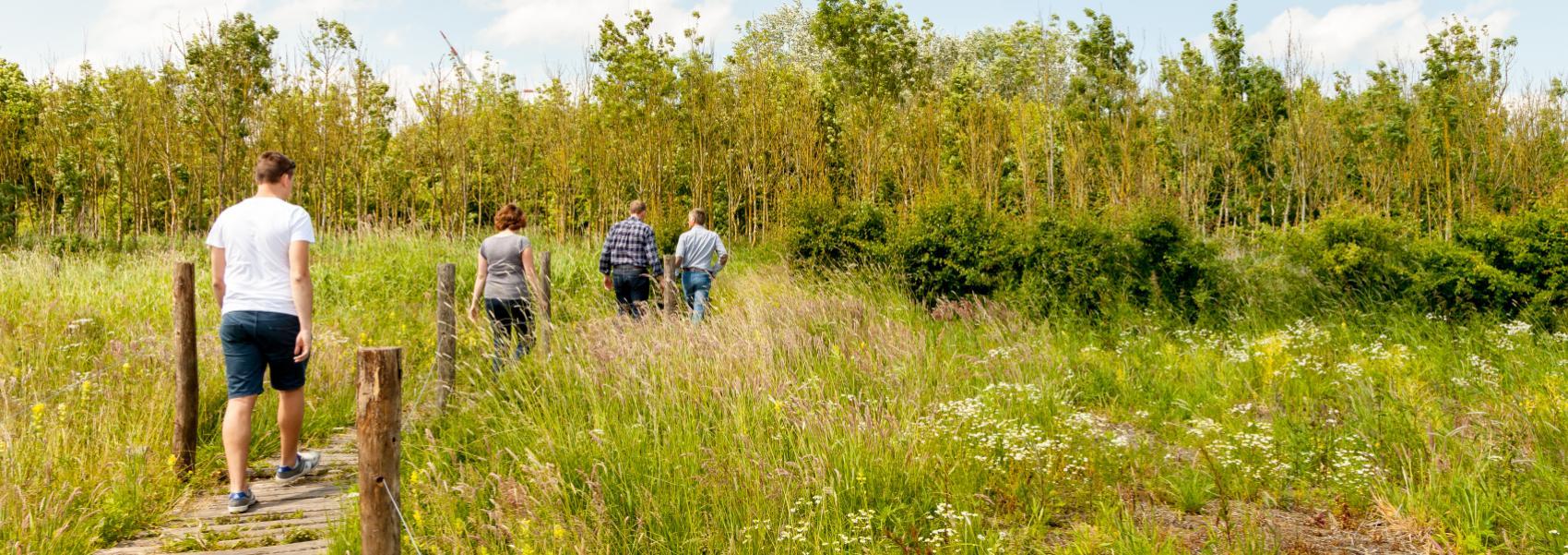 wandelaars in het grassenlandschap