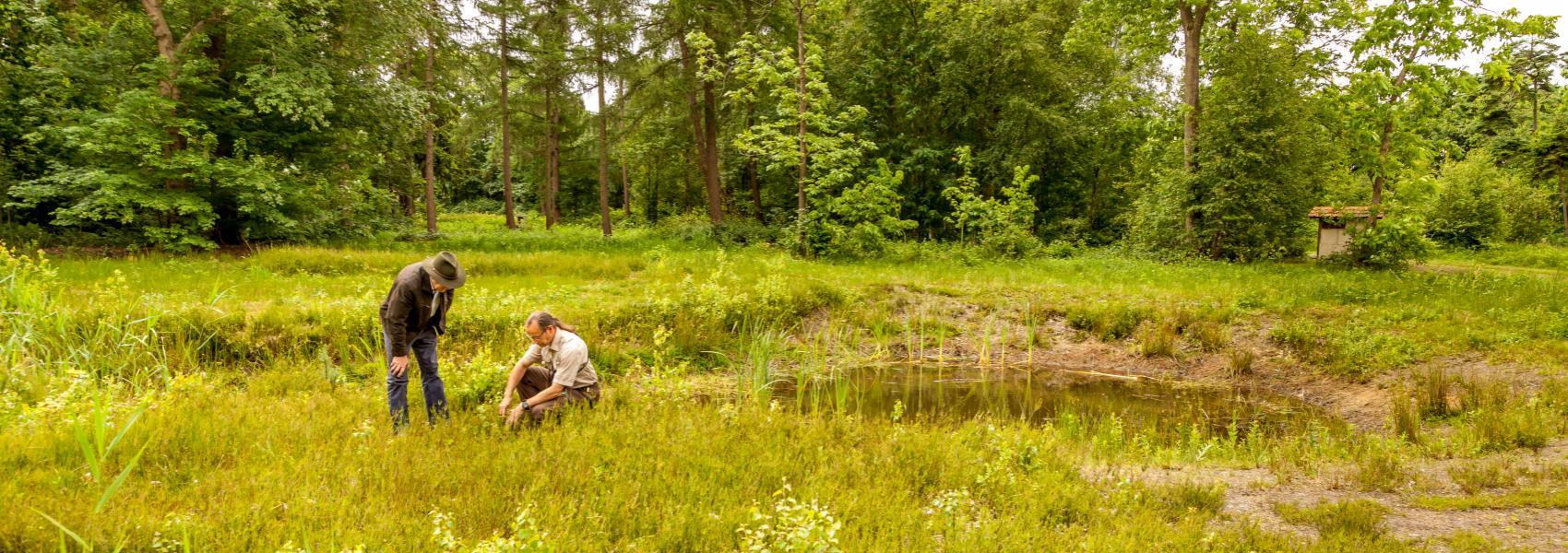 2 boswachters bestuderen samen planten