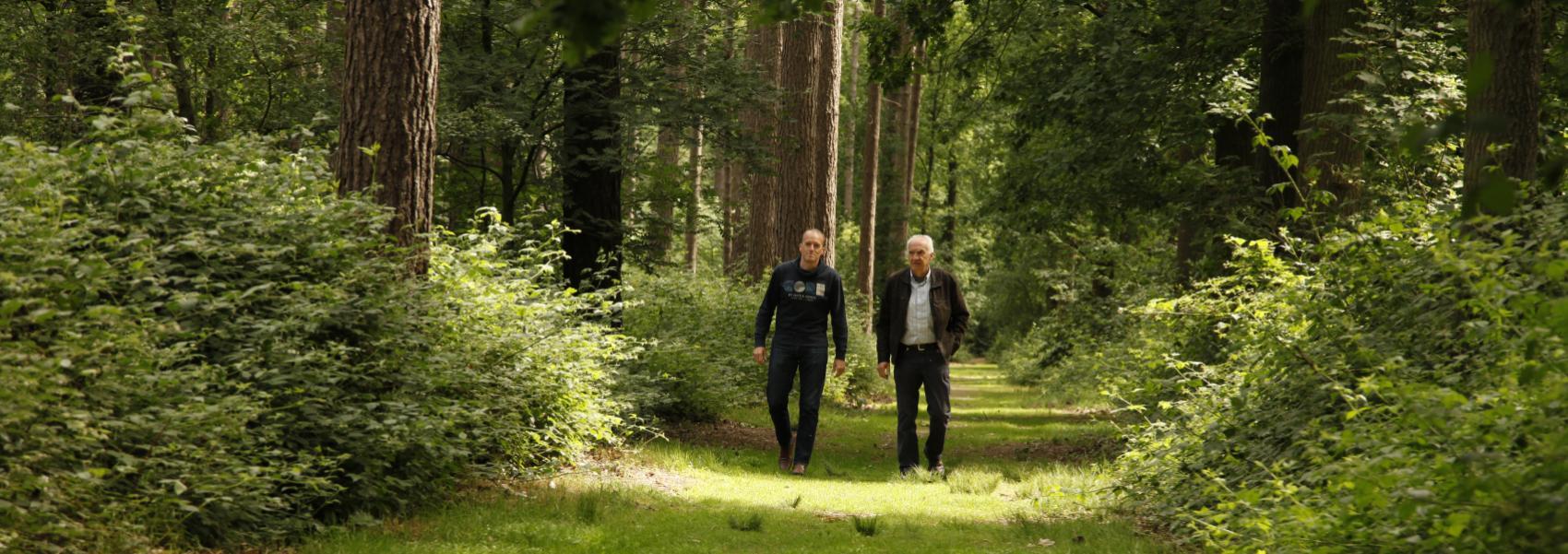 2 mannen aan het wandelen in een dreef in het Koekelarebos