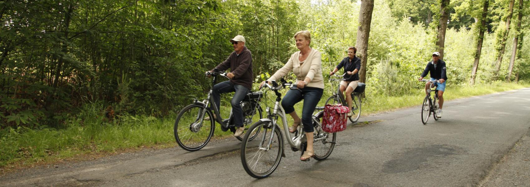 een klein groepje fietsers