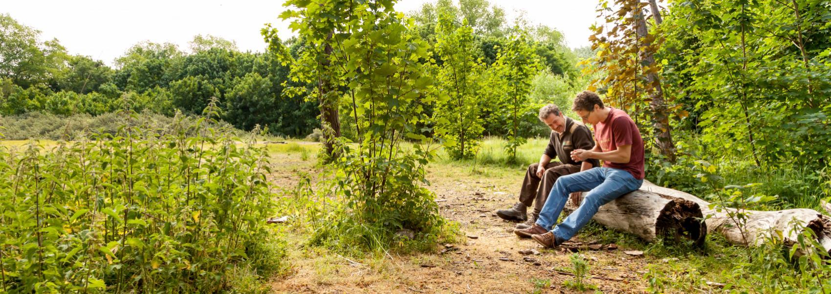 2 personen op een boomstronk