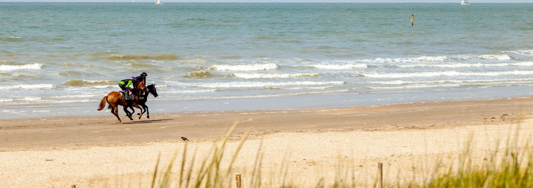 ruiters op het strand