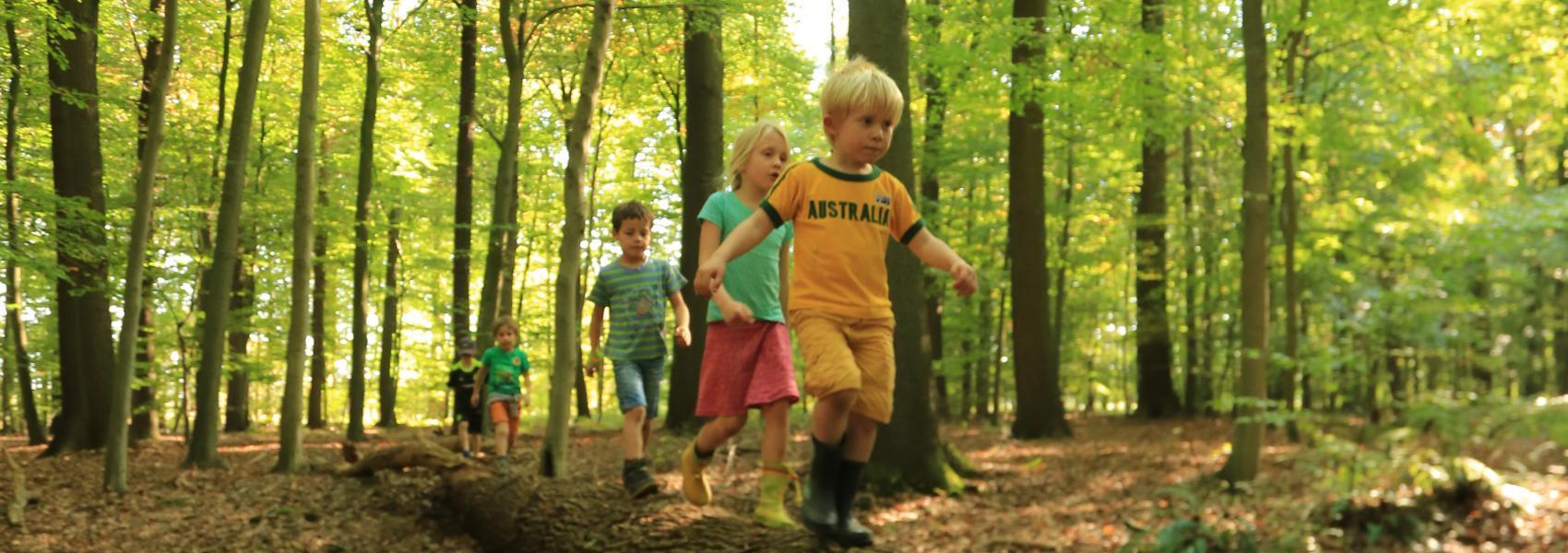 Spelende kinderen Buggenhoutbos © Wouter Maes