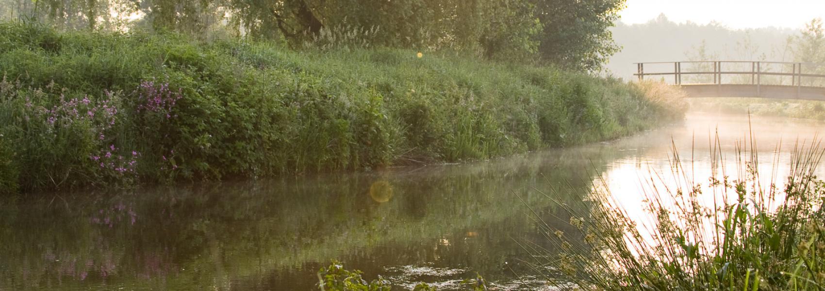 zicht op de waterkant met brugje over het water
