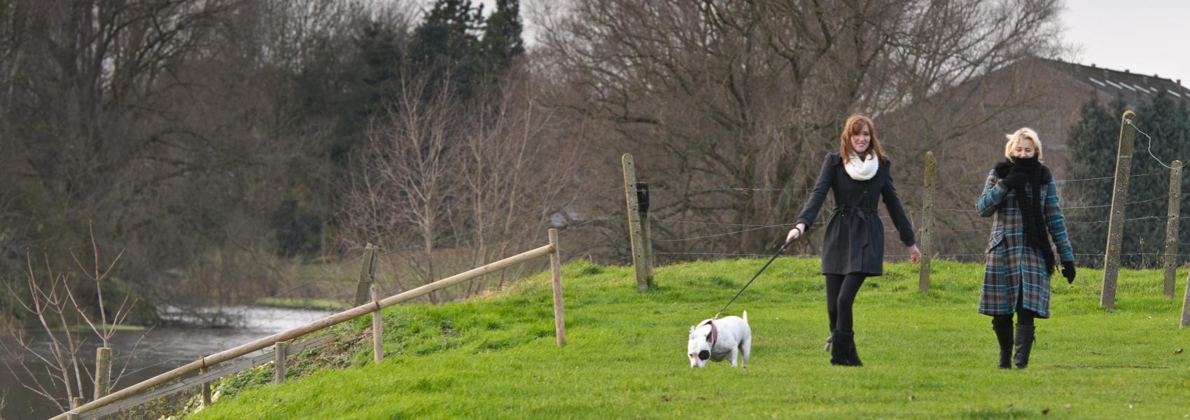 twee wandelaars met een hond