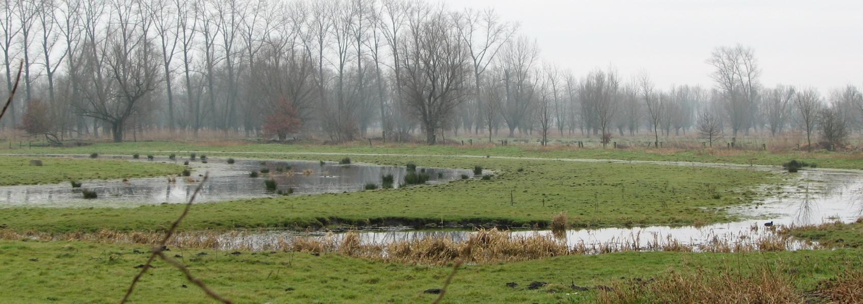 water in het landschap