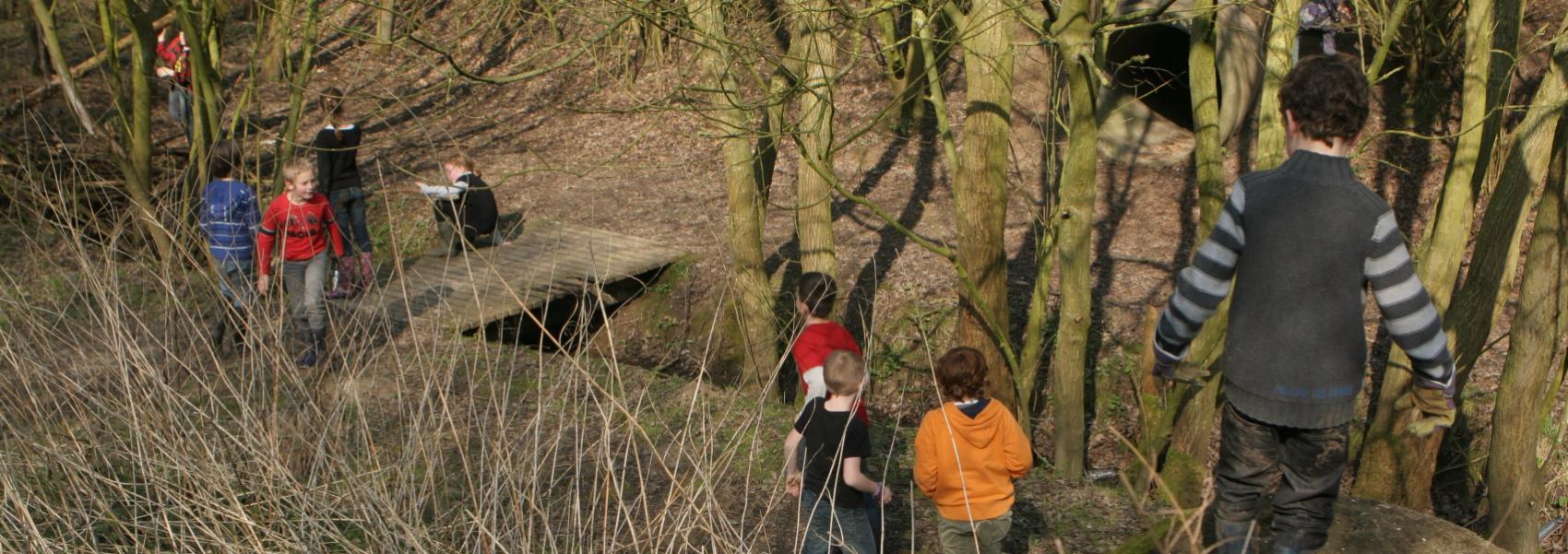 spelende kinderen in het bos