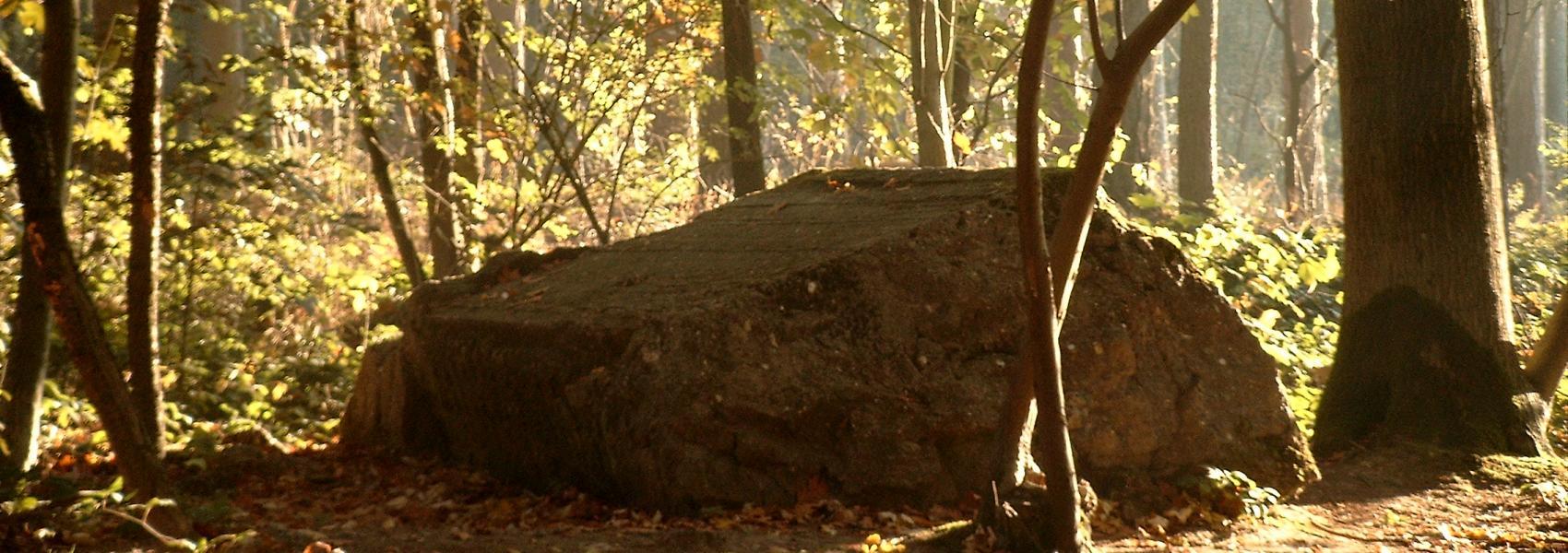 bunker in de doeldreef