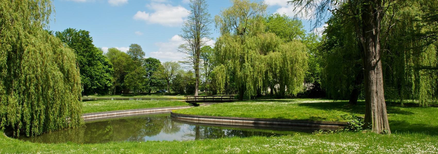 zicht op het water in het park