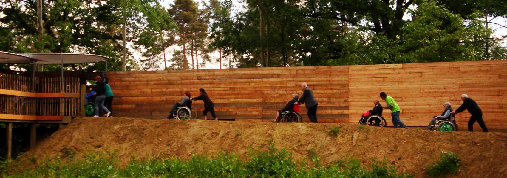 rolstoeltoegankelijke kijkwand in het Meerdaalwoud