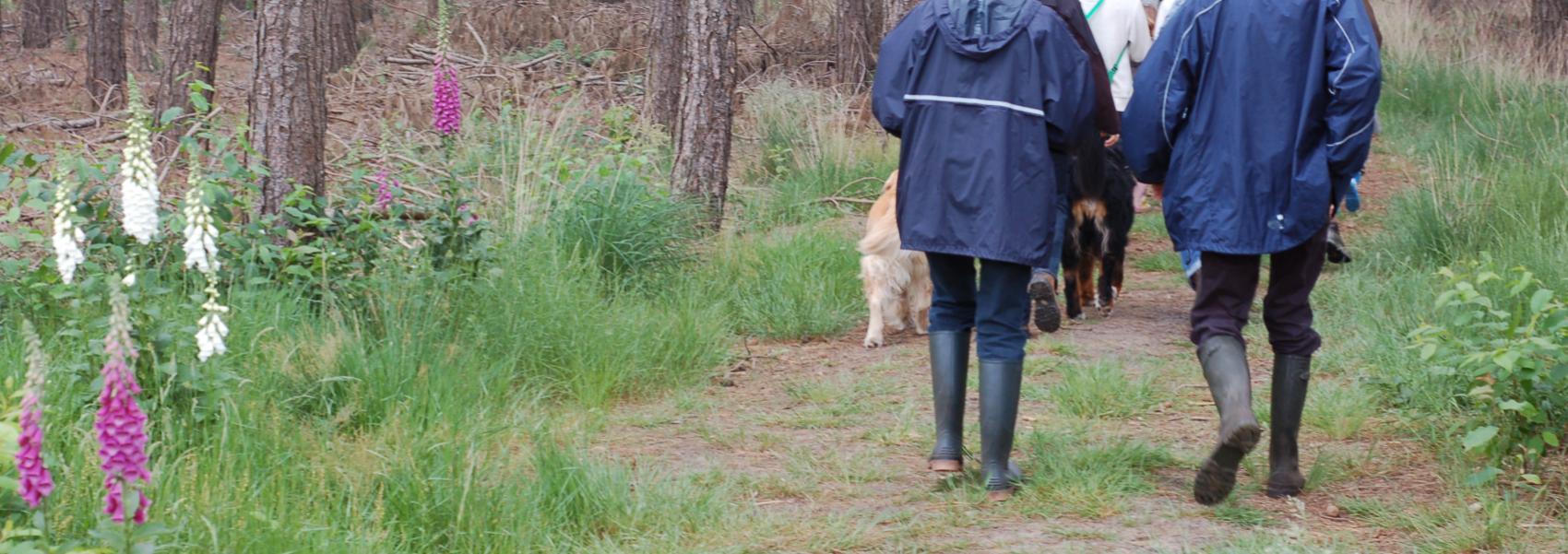 wandelaars in eksterheide