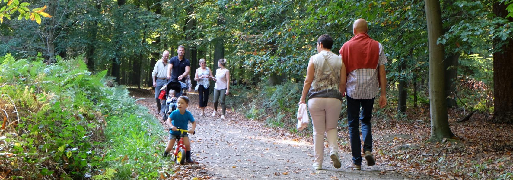 Wandelaars in Buggenhoutbos Foto: Griet Buyse