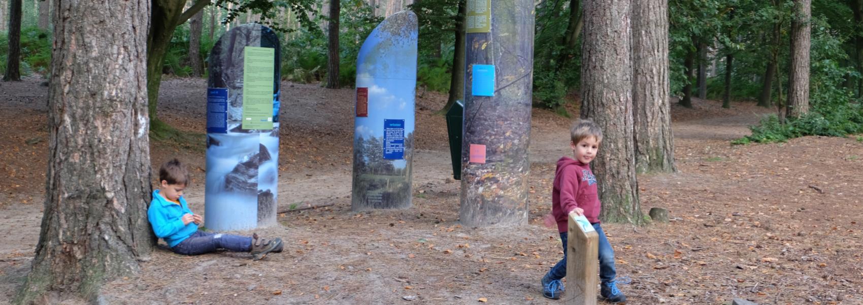 kinderen bij speelzuilen in het bos