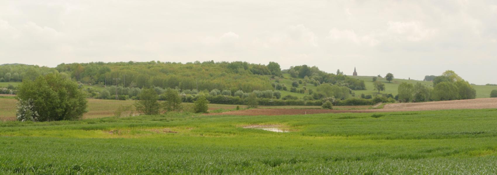 zicht over het landschap