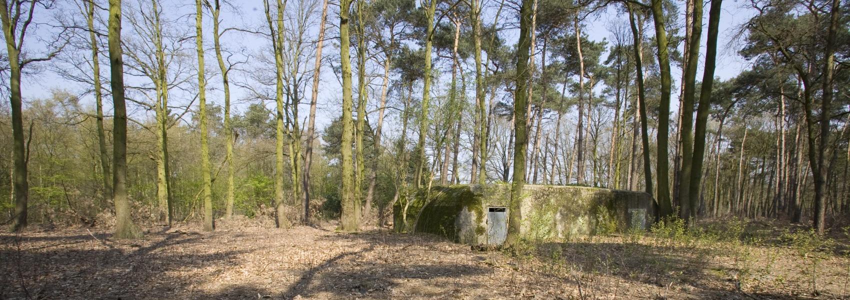 bunker in het Elsenbos