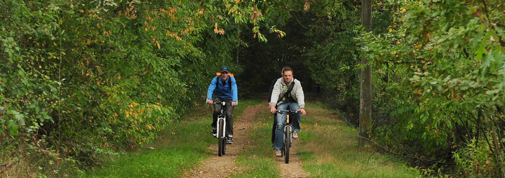 mountainbikers in het bos