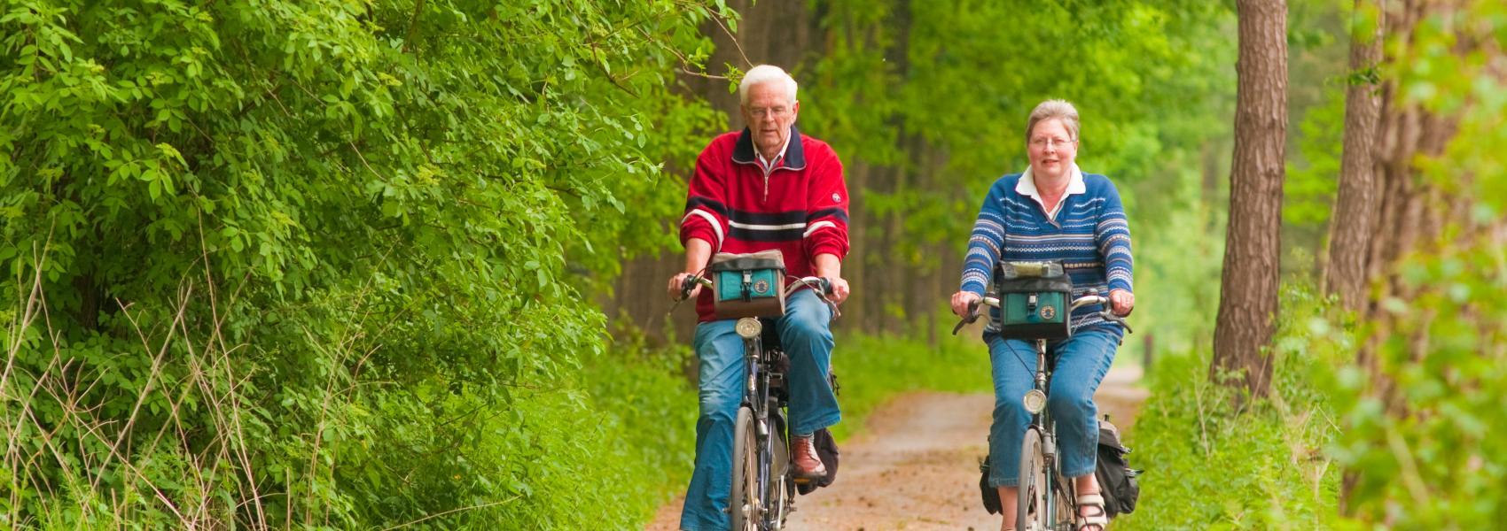 fietsers in het bos