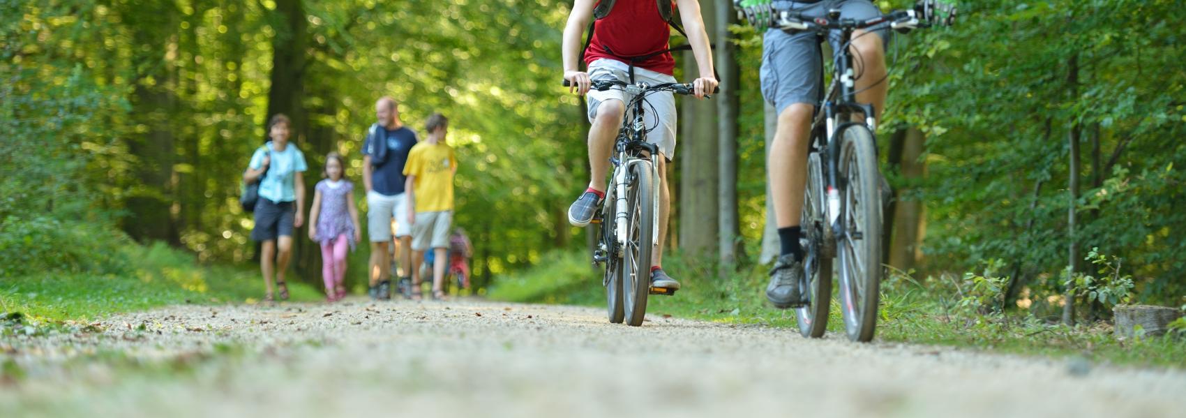 fietsers en wandelaars in het domein