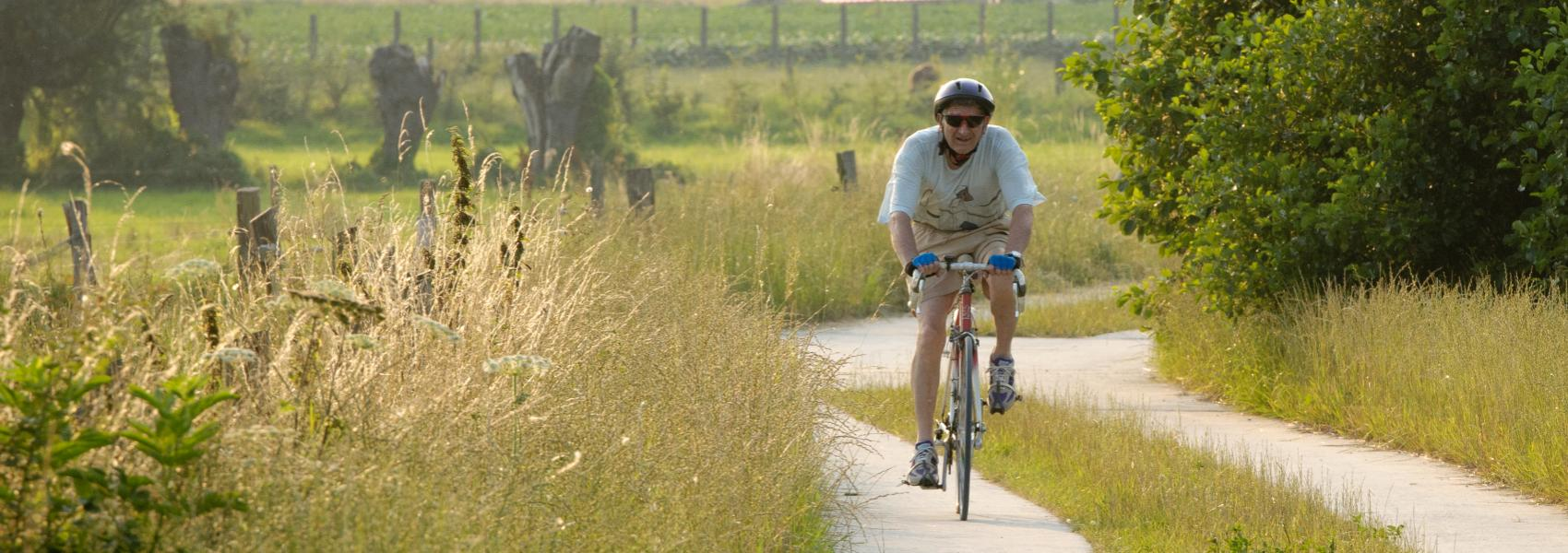 fietser in het landschap