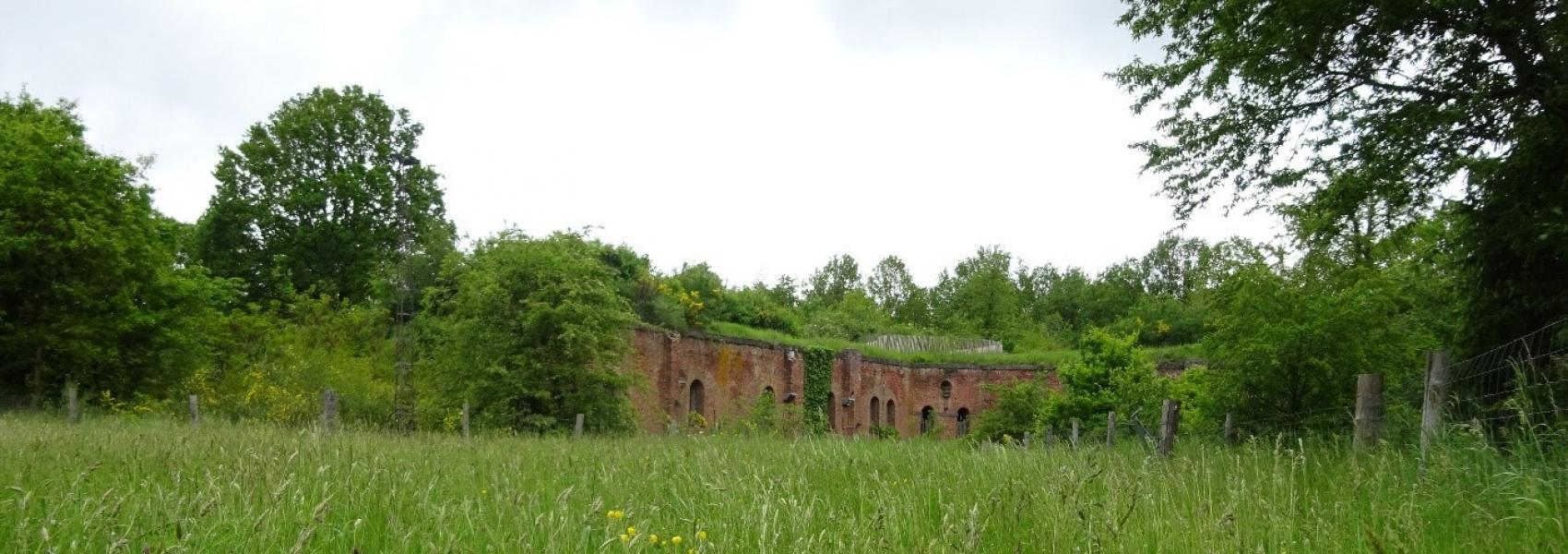 Fort Leopold