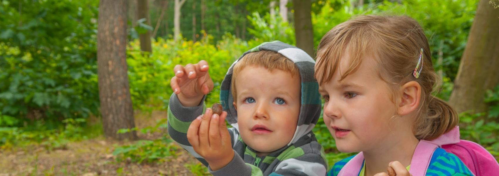 Kinderen in het Meerdaalwoud
