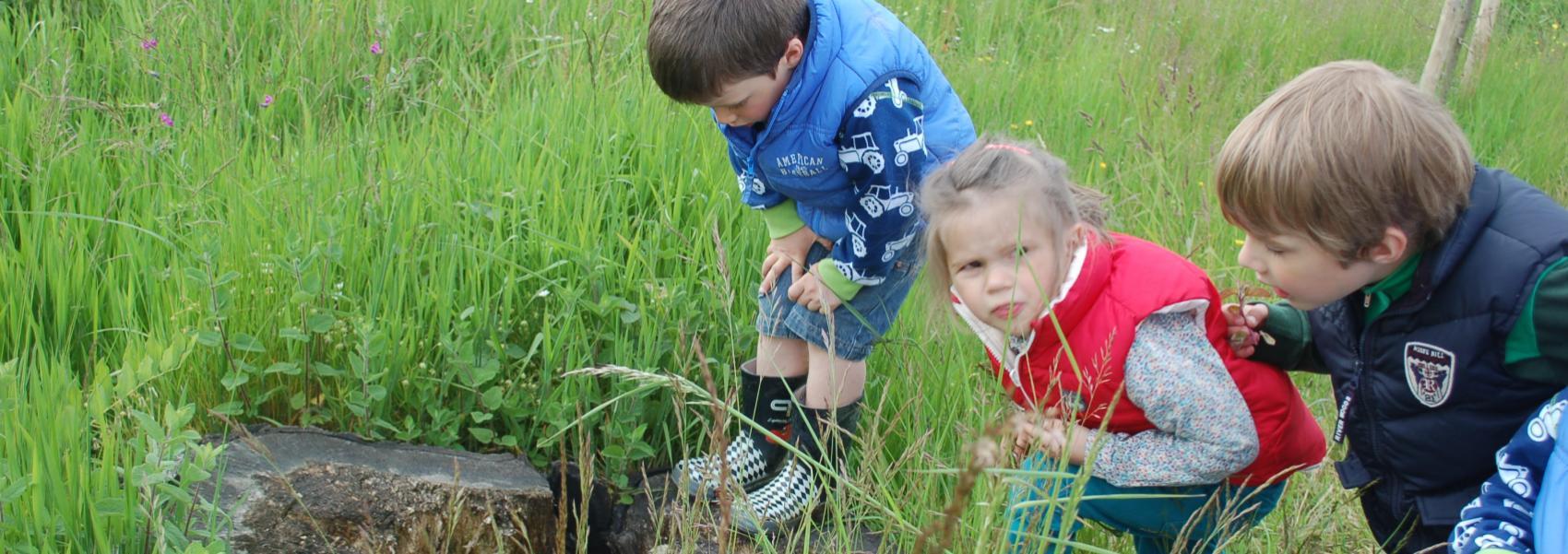 Kinderen in stadsbos Deinze