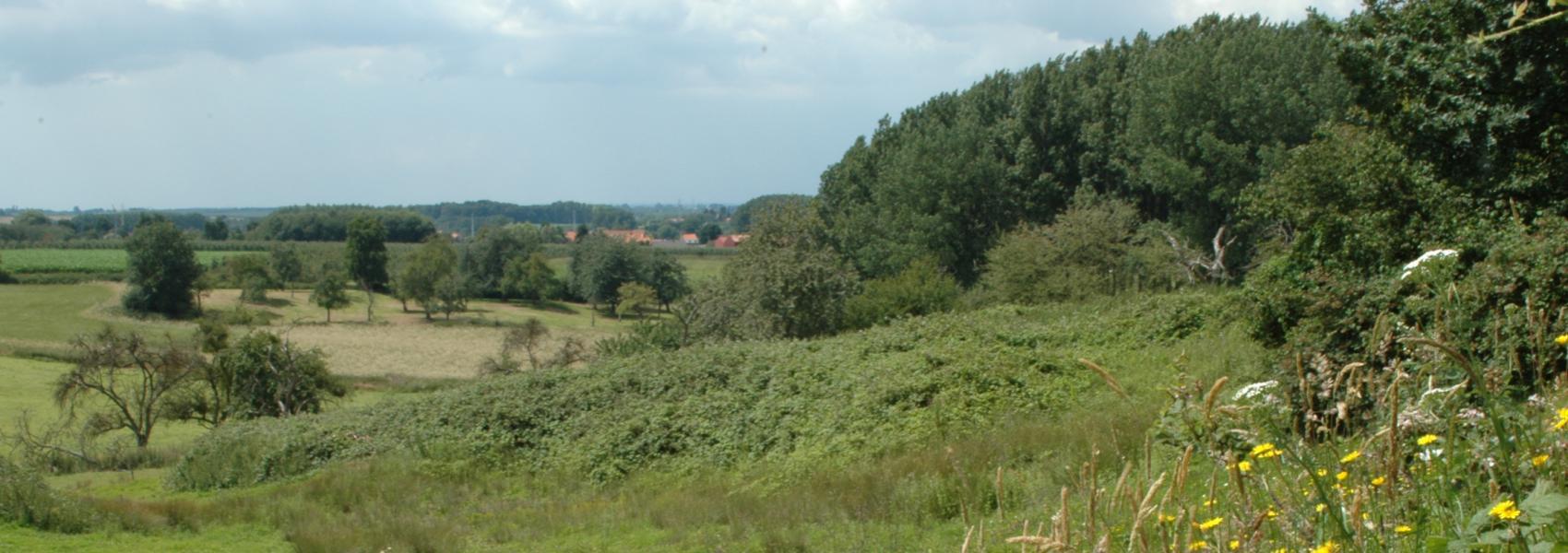 zicht op het landschap (grootloon)