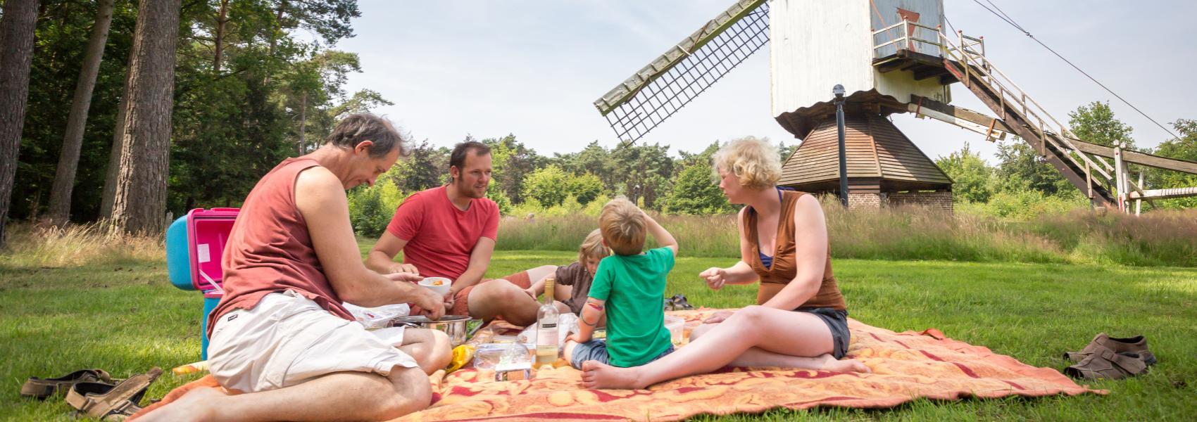 familiepicknick bij de molen