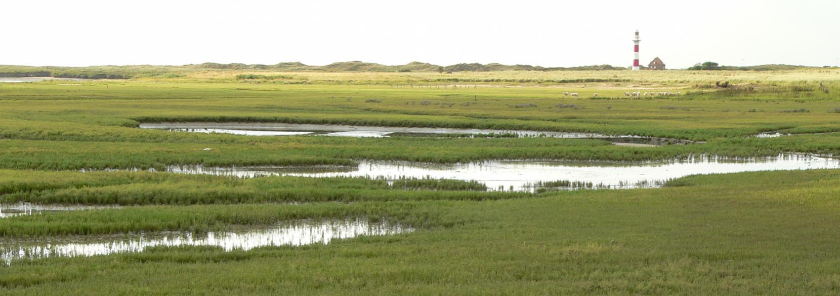 water in het landschap