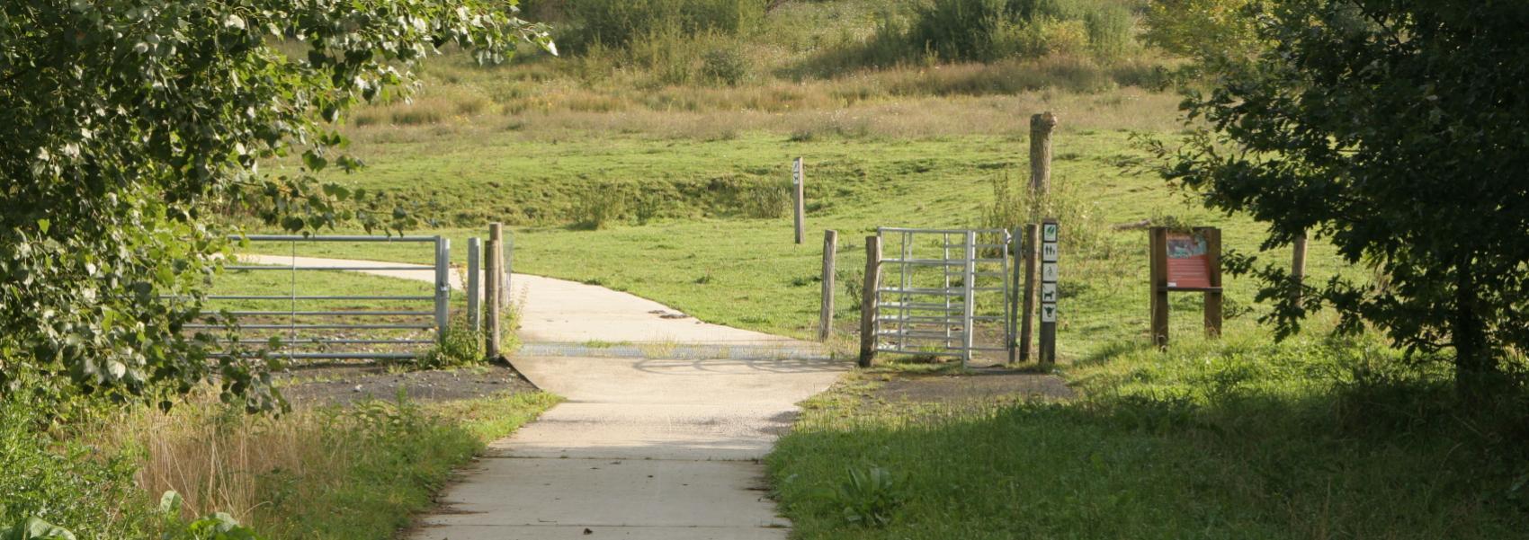verhard fietspad in het landschap