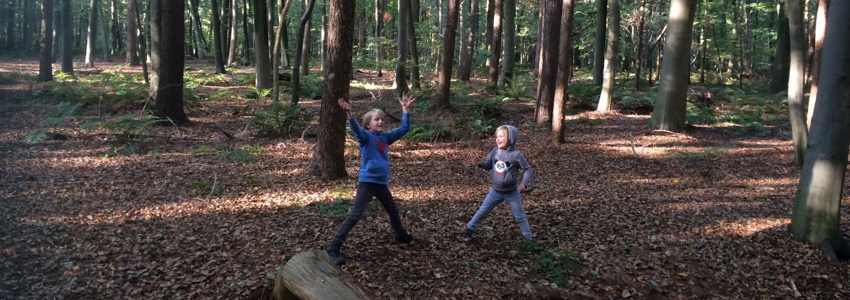 Kinderen in bos - Evelien De Munter