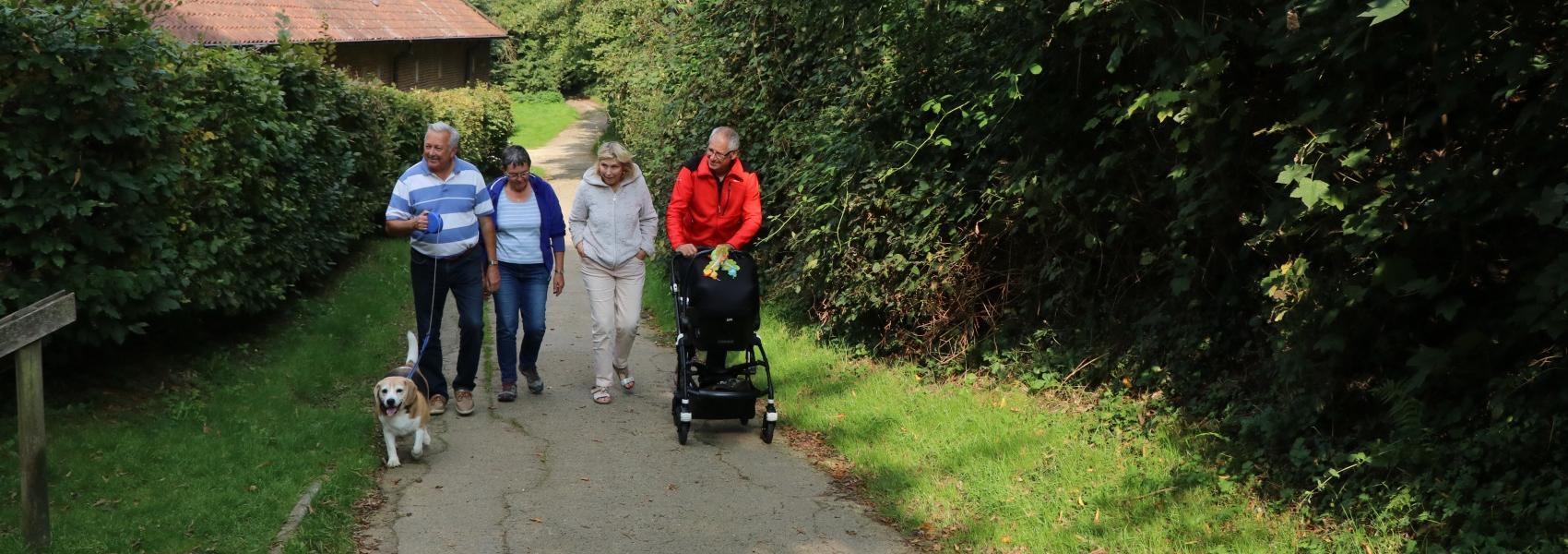 4 wandelaars met kinderwagen en hond