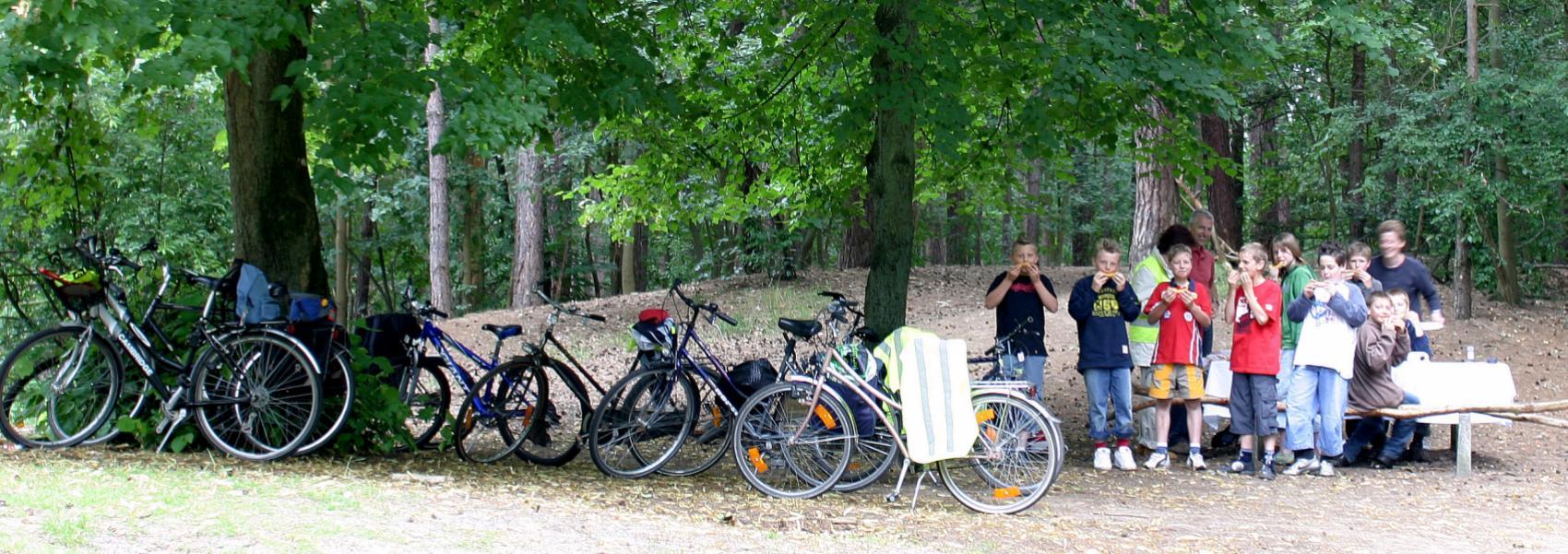 groep picknickende kinderen bij hun fietsen