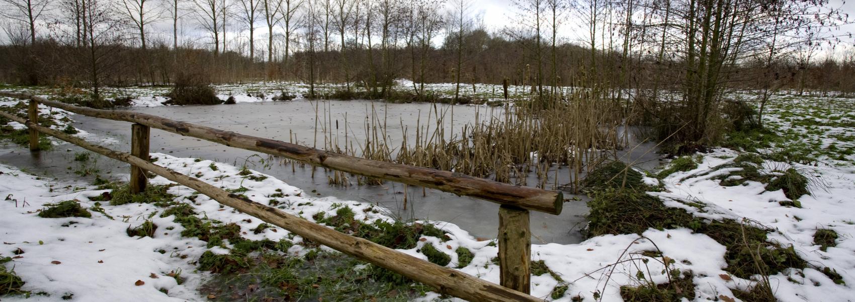 zicht op een winterlandschap