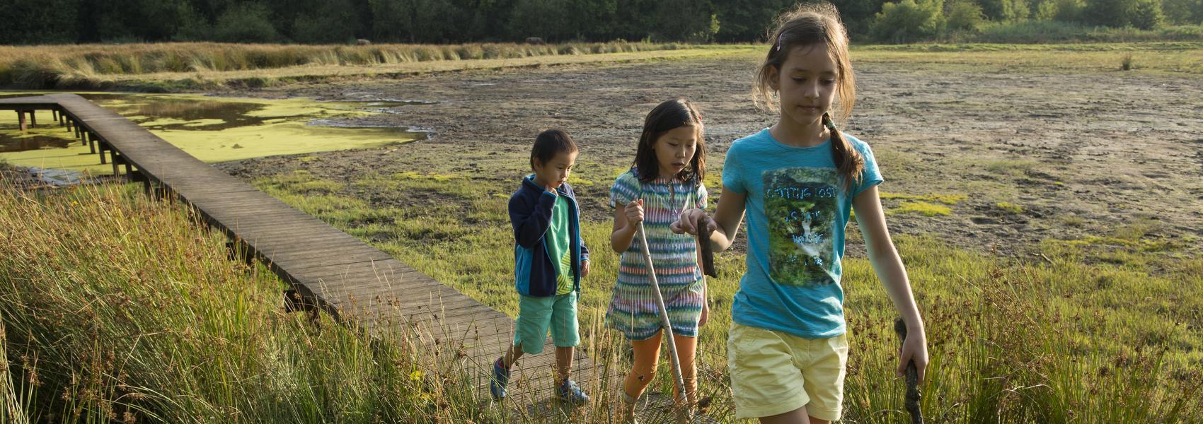 3 kinderen op houten pad