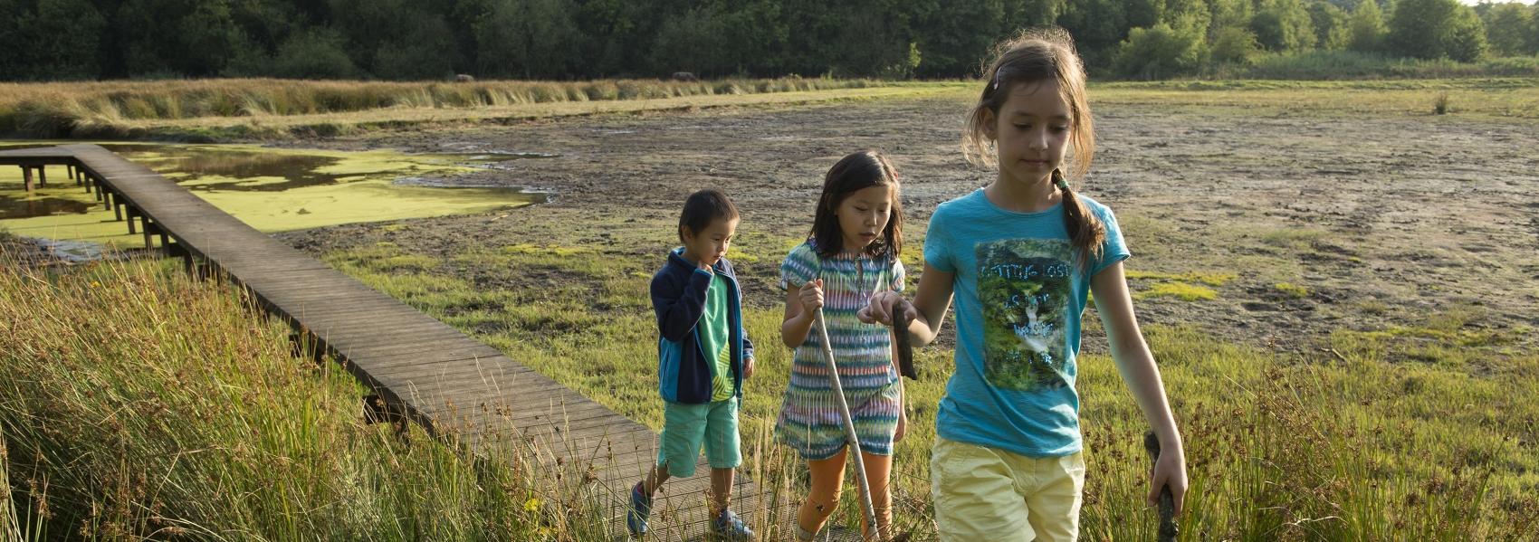 3 kinderen op een knuppelpad