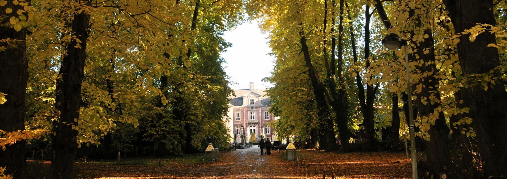 Leut Vilain XIIII - zicht op het kasteel door de bomen heen