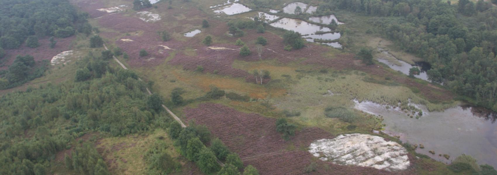 luchtfoto van het domein