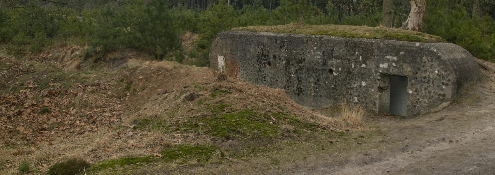 een bunker in het bos