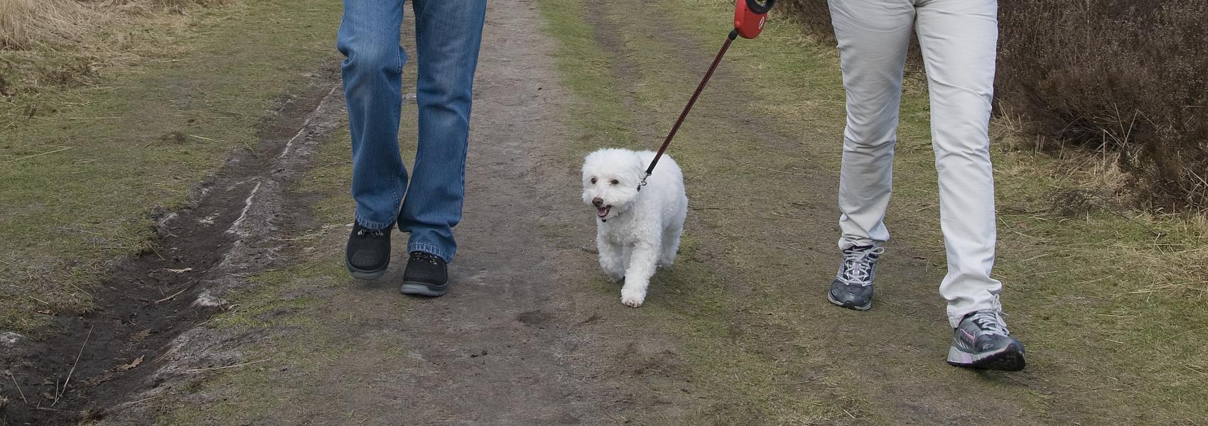 wandelaars met hond