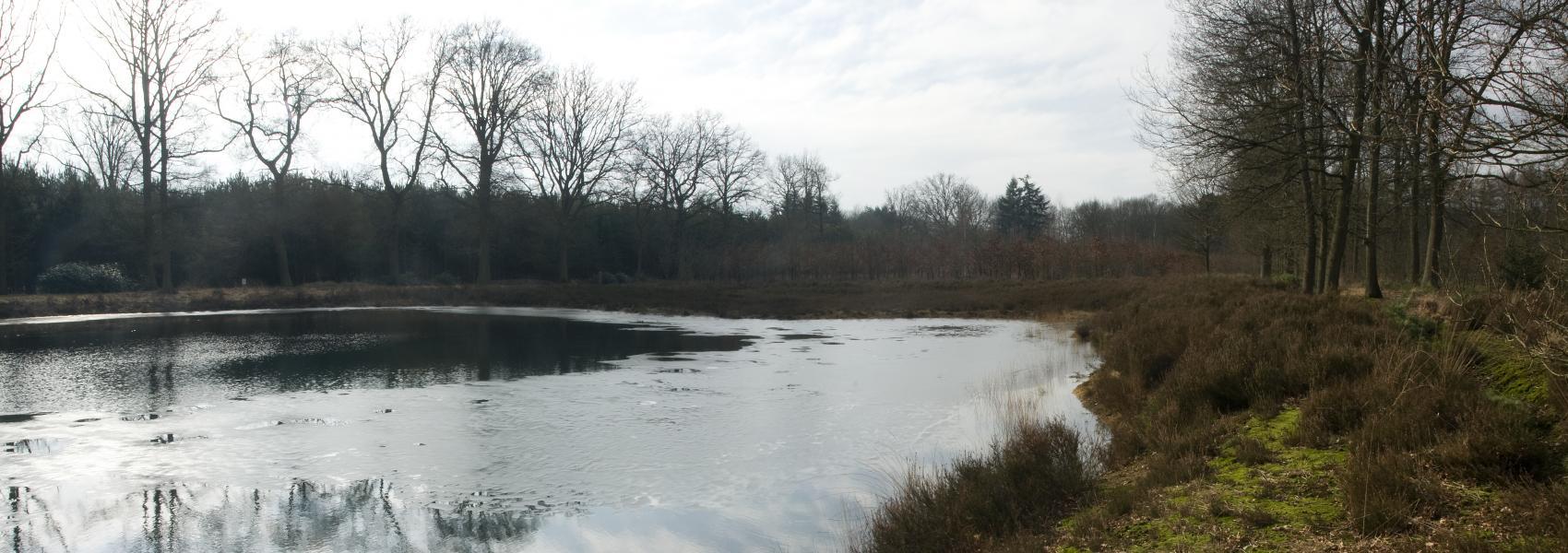 zicht over het water