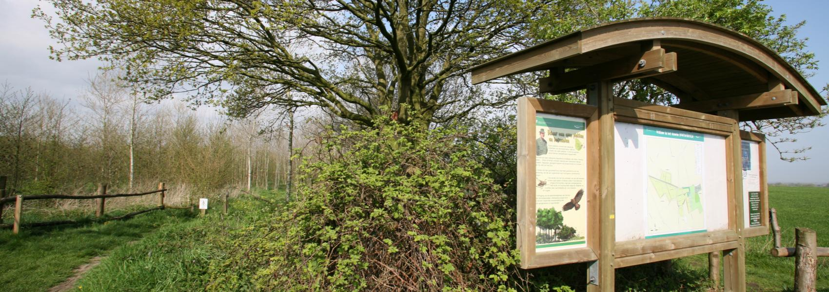 infobord naast  boom